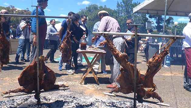 Se celebra en Rivera el primer Festival Regional del Cordero